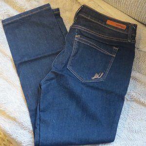 Express Dark Wash Mid Rise Skinny Jeans